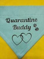 DOG BANDANNA OVER THE COLLAR QUARANTINE BUDDY