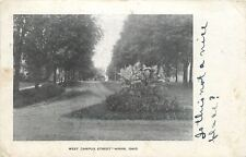 Hiram Ohio~West Campus Street~Flowers at Fork in Dirt Road~I Go to School~1909