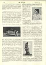 1899 armenios en Calcuta campeón Scotch Terrier Semper Fidelis XS