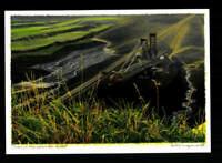 Heiner Altmeppen Autogrammkarte Original Signiert Maler ## BC 161457