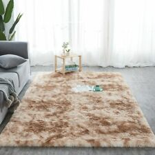 Gradient Carpet Area Rug Water Absorb Anti-slip Floor Mat Bedroom Living Room