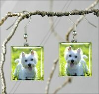 DOG WHITE WESTIE BREED SQUARE GLASS CABOCHON EARRINGS -gyf6Z