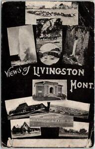 1920 LIVINGSTON, Montana Postcard Multi-View w/ Yellowstone National Park Scenes