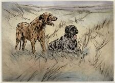 IRISH WOLFHOUND FOUR GENERATIONS OF NAMED CHAMPION DOGS OLD 1930/'S DOG PRINT
