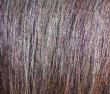 *Tail Extension CHESTNUT 1/2# New AQHA KATHYS TAIL FREE US Shipping & Bag