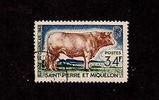 St. Pierre & Miquelon - 1964 - SC 373  - Used - Charolais Bull