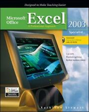 Microsoft Office Excel 2003: A Professional Approach