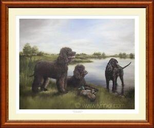 IRISH WATER SPANIELS limited edition fine art print