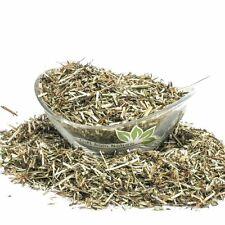 WILD BASIL Herb 4oz (113g Dried ORGANIC Bulk Tea,Clinopodium vulgare l Herba