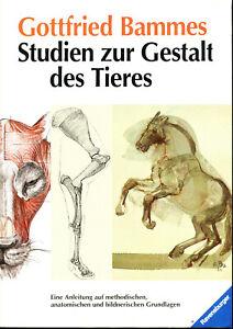 Gottfried Bammes / Studien zur Gestalt des Tieres