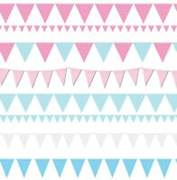 Bunting Blue Pink 20 Flag 10m Baby Shower Boy Girl Flags Wedding Birthday Pastel
