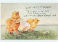 We Just Broke Out Chicks Hatch Easter 1910s Antique Postcard 23519