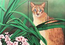 Maldives Cat Stamps Souvenir Sheet 1998 Mnh Snowshoe Cats Of The World Flowers