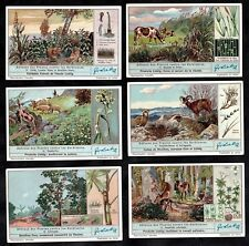 Plants Protection From Animals Liebig Card Set 1937 Natute Farming Goat Deer Cow