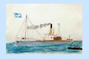 WALLAMBA - A Taylor, Sydney by HR Bartlett 1919-22 Modern Digital Art Postcard
