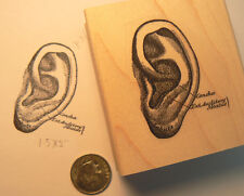 P36  vintage Ear rubber stamp