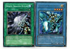 Paladin of White Dragon Fusion: with White Dragon Ritual 1st  DPKB Yugioh Mint