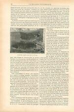 Proue de Bateau Voilier Navire Avariés par Iceberg GRAVURE ANTIQUE PRINT 1899