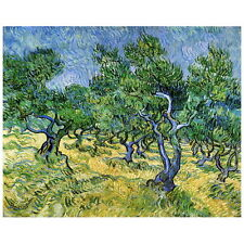 Van Gogh, Olive Grove Deco FRIDGE MAGNET, 1889 Fine Art Repro Refrigerator Gift