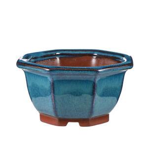 Ceramic Succulent Cactus Bonsai Flower Pot/Planter/Container/Plant Pots for Home