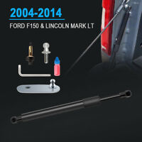 Lift Support Tailgate Shock Assist Gas Strut For 2004-2014 Ford F-150 DZ43200