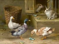 Home Wall Art Decor Ducks And Rabbits Oil Painting Picture Printed On Canvas