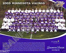 2003 MINNESOTA VIKINGS NFL FOOTBALL TEAM 8X10 PHOTO PICTURE