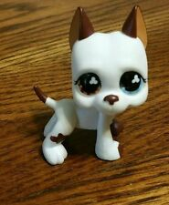 Littlest Pet Shop LPS Brown Flower Great Dane Dog Tattoo Green Eyes #577