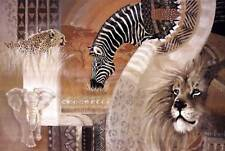 New African Colors by Diana Martin Fine African Wildlife Art Print Decor 46700
