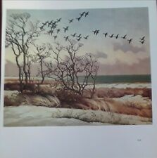 "Frances Lee Jaques""FAIR & COLD, BRANT OVER DUNES""1940-Wildlife Art Print-11.5x10"