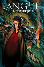 Angel: After the Fall: Volume 1 by Brian Lynch (Hardback, 2008)