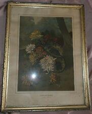 Cadre fin XIXème  bois & stuc doré verre & chromo Chrysanthèmes JOGNARELLI 1877