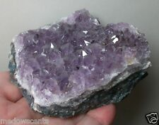 Amethyst with Goethite Inclusions natural druzy crystal cluster Brazil~cr105