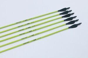 12PCS 31.5in Fiberglass Arrow Fluorescent Green Feather Archery Recurve Hunting