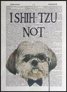 Shih Tzu Quote Vintage Dictionary Page Print Picture Animal Pun Funny Shitzu