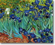 "Vincent van Gogh IRISES Stretched Canvas Giclee Art Repro 30"" x 24"" FLORAL"