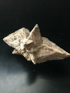 Gypsum(Selenite) Var White Crystal Specimen