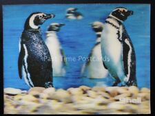 MAGELLAN PENGUIN (3-D) - Shell (Oil) 1975