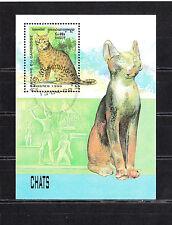 Cambodge état  bloc  faune chats   1999   num:  BF 151  oblitéré