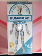 ANATOMIA HUMANA MAN ANATOMY MODEL Visible man