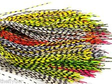 HARELINE's GRIZZLY BARRED RUBBER LEGS ... Pack or Lot -- Fly Tying