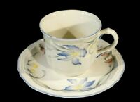 Beautiful Villeroy Boch Riviera Cup And Saucer
