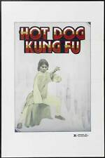 WRITING KUNG FU Movie POSTER 27x40 John Cheung Bolo Yeung