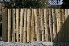 Bambus Kette Asiatischer Garten Bonsai 80x200cm Kuri