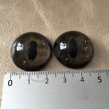 Paire Yeux en Verre Anciens Taxidermie Reptile Crocodile Glass Eyes Taxidermy