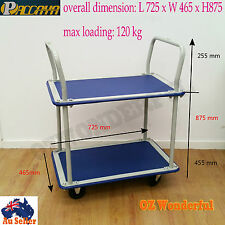 Platform Trolley 2 Tiers Handtruck Pushcart Steel Frame Load 120kg Service Cart
