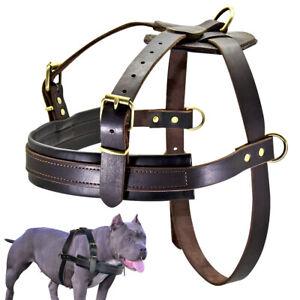 Genuine Leather No Pull Large Dog Harness Adjustable Pitbull Rottweiler Mastiff