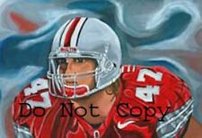 AJ Hawk Ohio State Painting signed Green Bay Packers