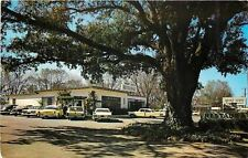 Albany Georgia~Merry Acres Restaurant~US Hwy 82 North~Nice 1950s Cars~Fins~PC