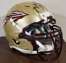Custom Florida State Seminoles Football Helmet